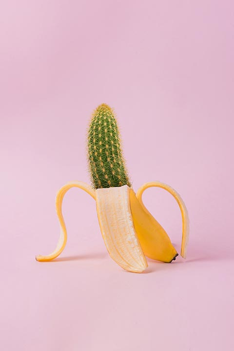 Cactus in a banana peel